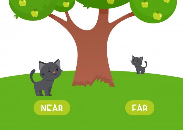 Kahoot Yarışması: İngilizce İşaret Zamirleri (Demonstrative Pronouns)