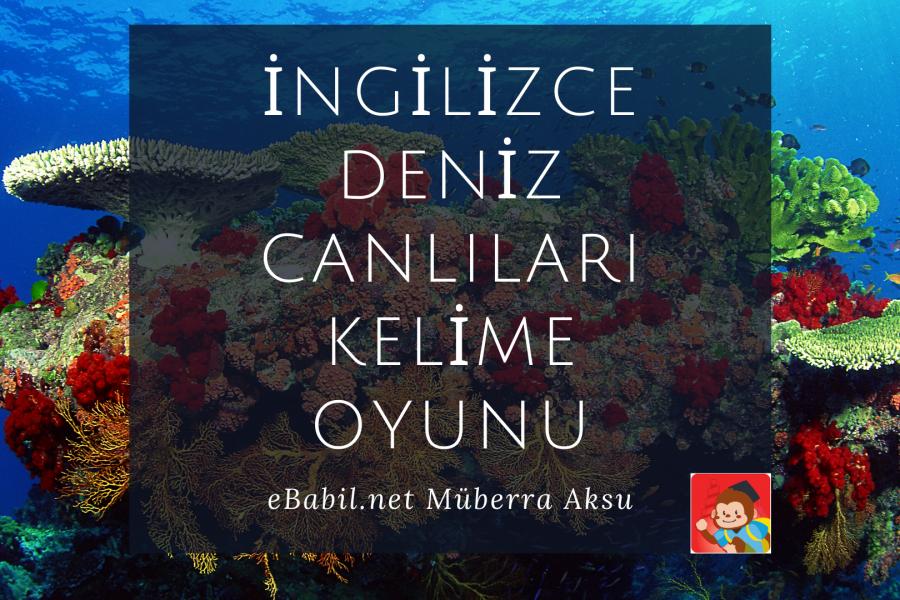 Kelime Oyunu (Quizizz): İngilizce Deniz Canlıları (Sea Animals)