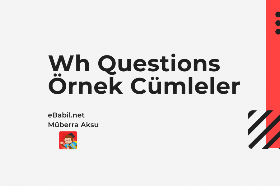 Örnek Cümleler: Wh- and Yes-No Questions