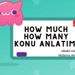 How Much How Many Konu Anlatımı ve Örnek Cümleleri