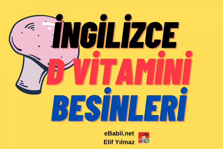 İngilizce D Vitamini Besinleri Ders Afişi (10 Foods That Are High in Vitamin D)
