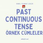 Past Continuous Tense Örnek Cümleler (İngilizce Şimdiki Zamanın Hikayesi)