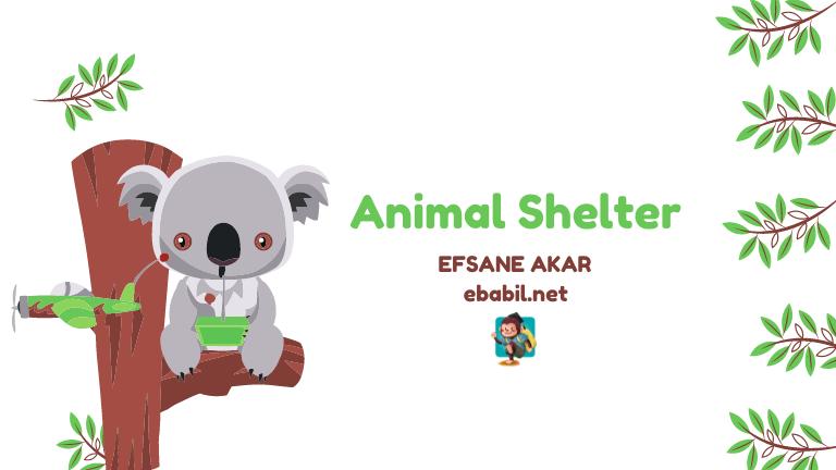 animal shelter ünitesi kelimeleri